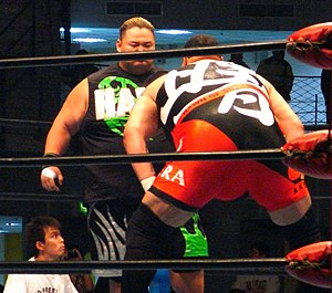 Ryota Hama - Hama (on the left) vs. Akebono in 2010