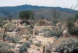 Santa Rosa Wilderness - Image: SR Wilderness