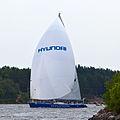 Sailboats 6539.jpg