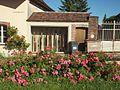 Saint-Aubin-Château-Neuf-FR-89-en vitrine-a2.jpg