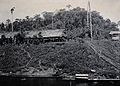 Sarawak; a tribal village by the Tinjar River. Photograph. Wellcome V0037443.jpg