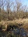 Schepkinsky Arroyo river.jpg