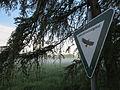 Schild Landschaftsschutzgebiet im Morgennebel 001.JPG