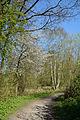 Schleswig-Holstein, Neumünster, Stör NIK 9759.JPG