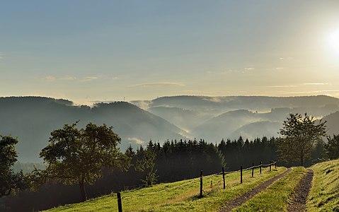 Schonach, Black Forest: surise and high fog
