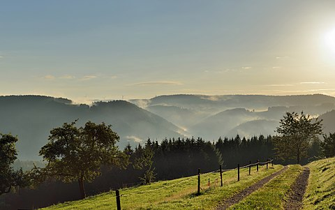 Beungöh di Schonach, Black Forest. (rayek gamba: 5.024×3.151)