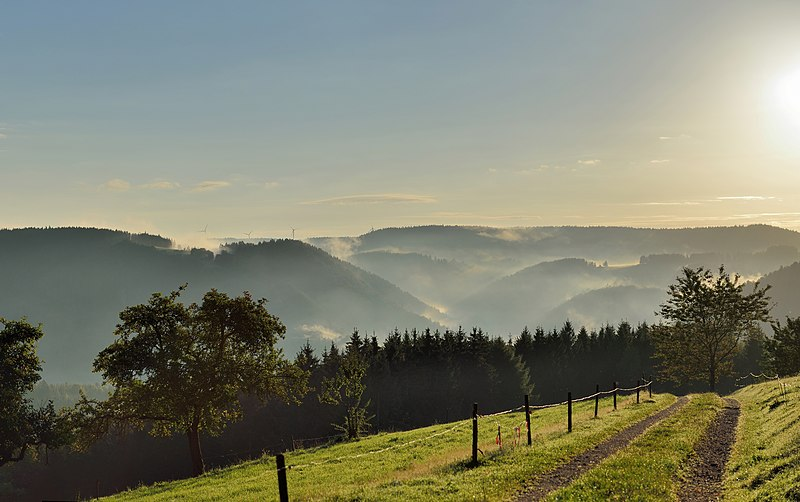 File:Schonach - Paradies - Sonnenaufgang.jpg