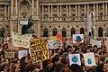 School strike for climate in Vienna, Austria - March 15 2019 - 11.jpg