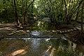 Scioto Grove - Grant Run 1.jpg