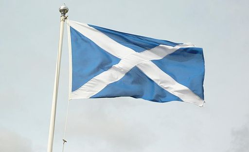 Scottish Flag - detail