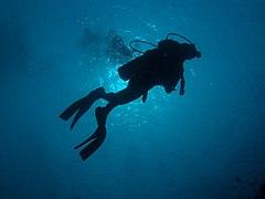 Scuba diver in silhouette.jpg