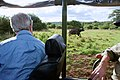 Secretary Kerry Looks at a Water Buffalo in Nairobi National Park (17171819649).jpg