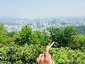 Seoul tower.jpg