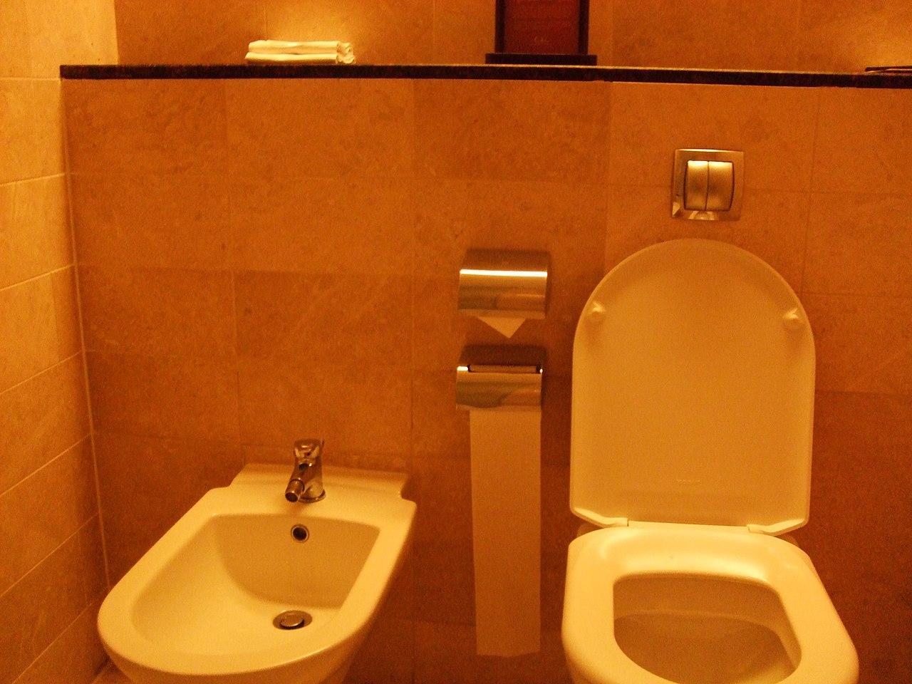 Spa Toilet Seat : Dobidos auto electronic toilet seat electronic spa bidet warm