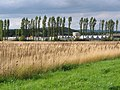 Shell oil storage depot, Doe Hill Lane near Stonebroom - geograph.org.uk - 250721.jpg