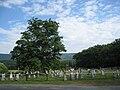 Shiloh United Methodist Church Lehew WV 2009 07 19 18.JPG