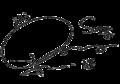 Shindong's signature.png