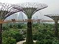 Singapore SuperTree Garden - panoramio.jpg