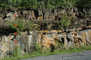 Geology of Norway - Cambrian conglomerate, limestone and Alum shale B, lying  unconformably above Precambrian gneiss D, intruded by a Permian lamprophyre sill A, Slemmestad, western Oslofjord