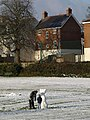 Snow thing, Cricketfield Road, Torquay - geograph.org.uk - 1660490.jpg