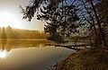 Sorpesee Naturpark-Sauerland-Rothaargebirge.jpg