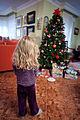 Sorpresa en la mañana de Navidad.jpg