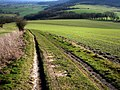 South Downs Way, Pen Hill - geograph.org.uk - 684294.jpg