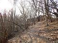 Sovetskiy rayon, Bryansk, Bryanskaya oblast', Russia - panoramio (208).jpg