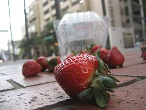 Five-second rule - Strawberries dropped on the ground. The five-second rule suggests that if they are picked up within five seconds, it is safe to eat them.