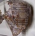Spiro engraved shell opussum HRoe 2005.jpg