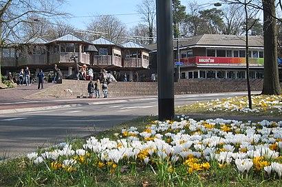 Hoe gaan naar Burgers' Zoo met het openbaar vervoer - Over de plek