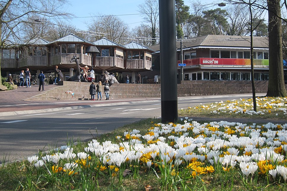 Springtime at the entrance of Burgers Zoo Arnhem-Schaarsbergen at 19 March 2015 - panoramio
