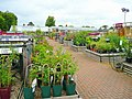 Squires Garden Centre plant area - geograph.org.uk - 937130.jpg