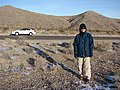 Starr-071223-0402-Atriplex canescens-habit in snow with Kim and rental car-Lee Canyon Rd-Nevada (31145162170).jpg