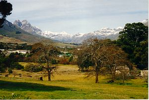 Drakenstein - Jonkershoek Valley and the Groot Drakenstein Mountains from Stellenbosch. Victoria Peak (1590m) is the heaviest snow-covered portion in the middle background