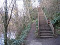 Steps on the River Almond Walkway - geograph.org.uk - 1047466.jpg