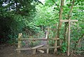 Stile by The High Weald Landscape Trail - geograph.org.uk - 1288269.jpg