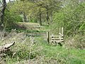 Stile on a little used footpath - geograph.org.uk - 1265116.jpg