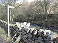 Stile on the Weardale Way - geograph.org.uk - 728962.jpg