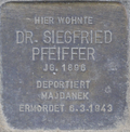 Stolperstein str pfeiffer siegfried.png