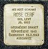 Stolpersteine Rose Cerf Mondorf-les-Bains, Allée Jean Linster 01.jpg