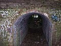 Strange little tunnel - geograph.org.uk - 971537.jpg
