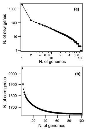 Pan-genome - Image: Streptococcus pneumoniae pan genome Donati 2011