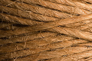 String Fibers