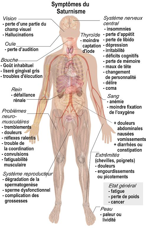 Lead in water symptoms adults