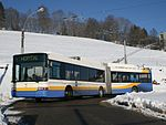 TRN Swisstrolley 2 125.jpg
