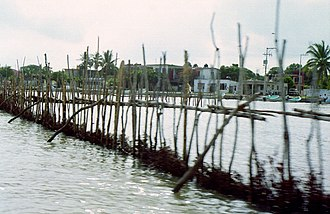 Tamiahua - Tamihua Crab Stands