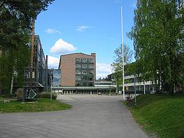 Sosionomi Tampere