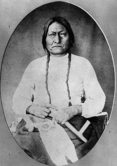Sitting Bull, Lakhota chief.