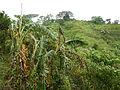 Taysan,Batangasjf9674 22.JPG